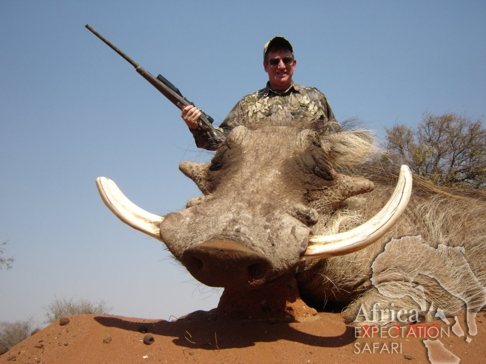 Africa Expectation Warthog.jpg