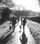 trainers near northallerton, north yorkshire - last post by ruthi