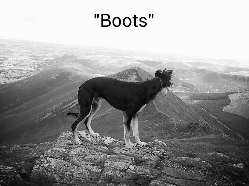 """Boots"""