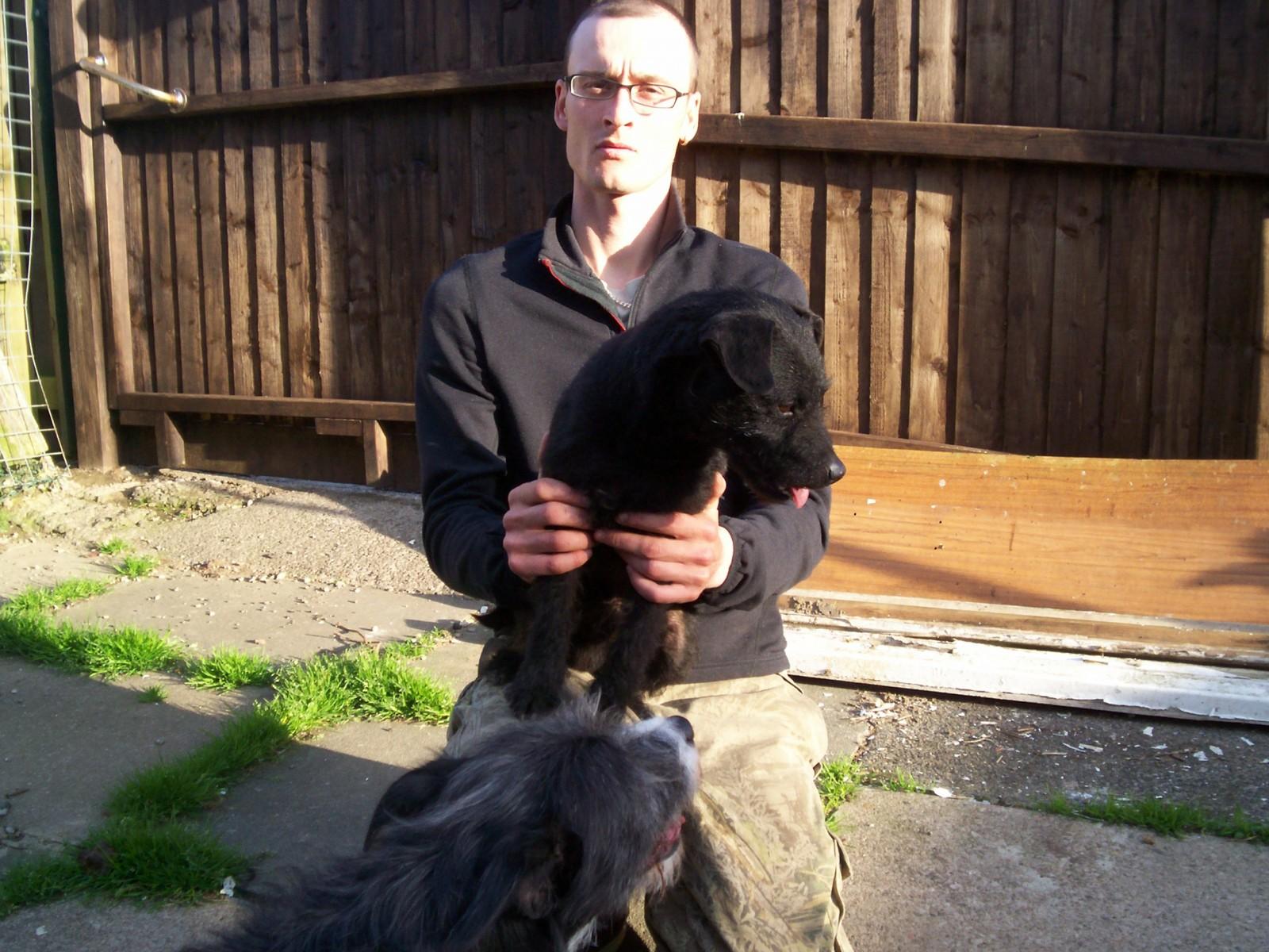Blackhearts Dogs 006