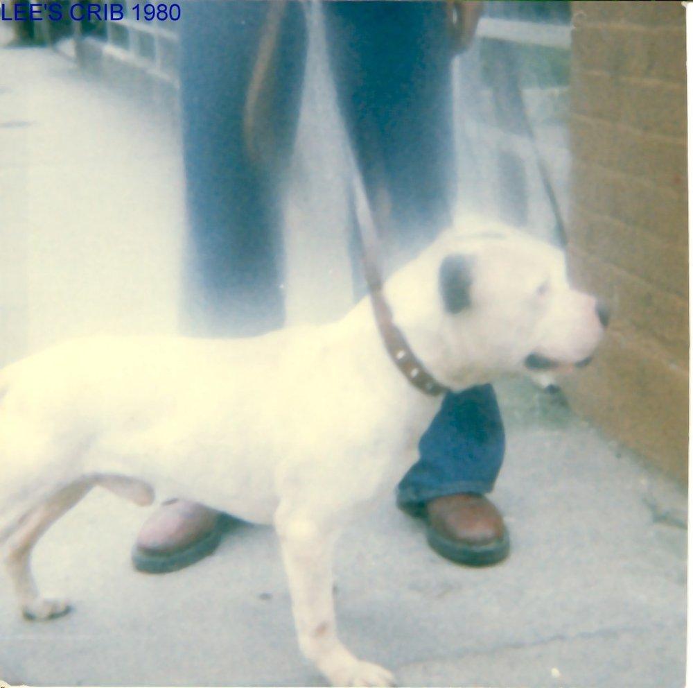 LEE'S CRIB 1980.jpg