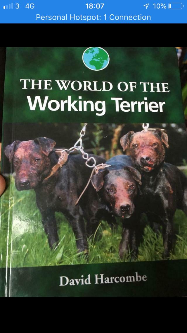 Brand New Terrier Book
