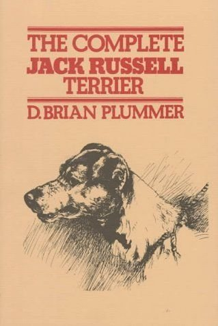 Complete Jack Russell terrier for book exchange