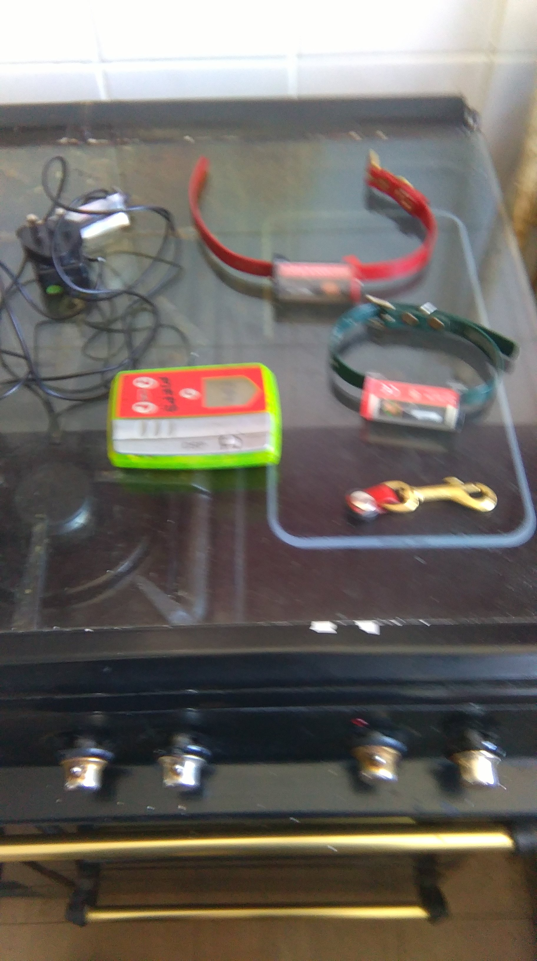 bellman and flint box 2 collars charger and keyring magnet