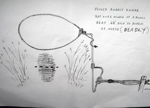 Peg Snare Over Beat