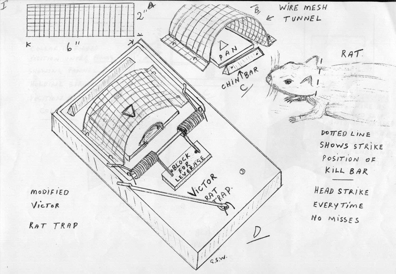 modified pro victor rat trap
