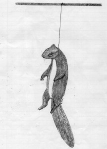 Snared Squirrel