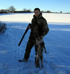Large Dog Fox Shot