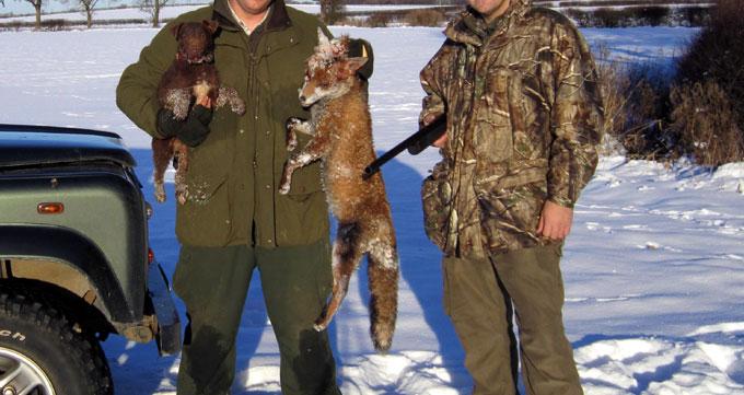 Fox Shooting - Large Dog Fox